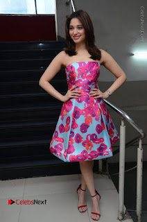 Actress Tamanna Latest Images in Floral Short Dress at Okkadochadu Movie Promotions  0184.JPG