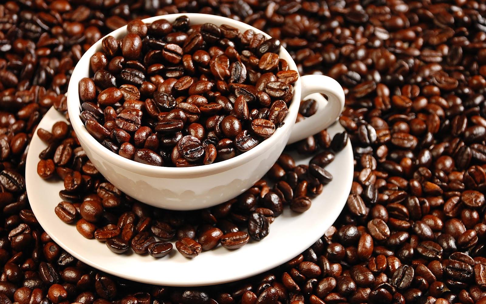 CARA LENGKAP MEMBUAT KOPI HIJAU GREEN COFFEE BEAN EXTRACT
