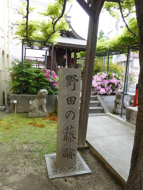 春日神社の藤(のだふじ発祥の地) 野田の藤跡 碑