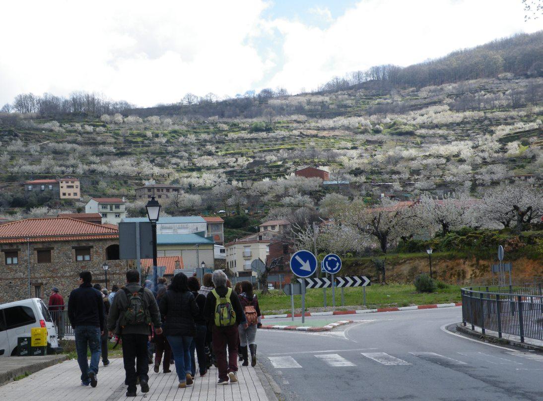 Arronches em not cias la codosera oficina de turismo for Oficina de turismo valle del jerte