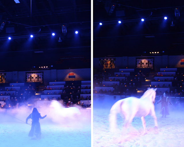 Magical horse in the mist at Medieval Times