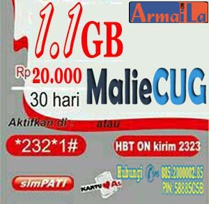 CUG Internet 1.1GB