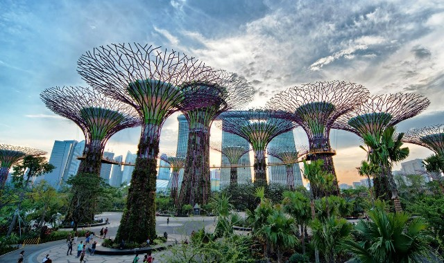 wisata singapura gardens by the bay