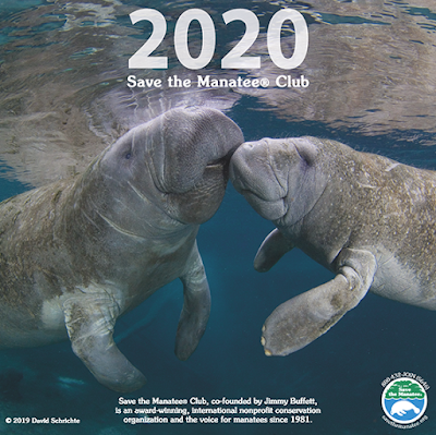 Cover of the 2020 Save the Manatees caledar, with a photo of two manatees
