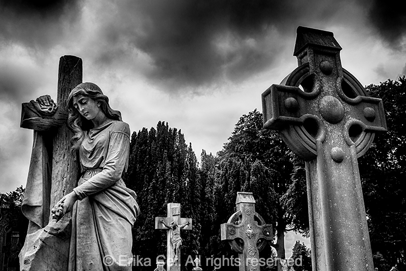 Glasnevil cemetery Ireland Dublin