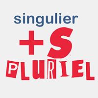 frammaire FLE, le singulier et le pluriel en français