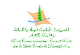 المندوبية السامية للمياه والغابات ومحاربة التصحر - alwadifa news
