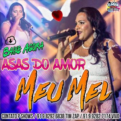 ASAS DO AMOR | MEU MEL