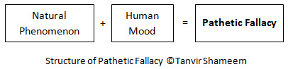 Structure of Pathetic Fallacy