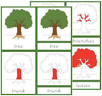 Primary Parts Of The Tree Cards Red Isolation Click On Picture To Link File