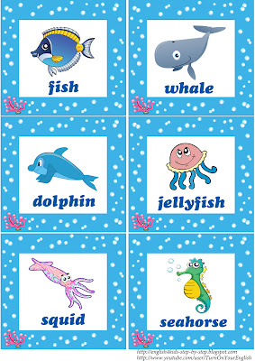 sea animals flashcards for children