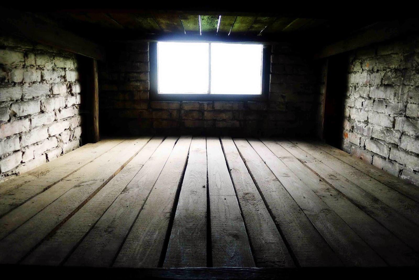 Auschwitz Bunk Beds