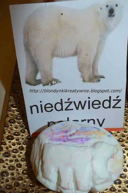 Niedźwiedź polarny  Król Północy