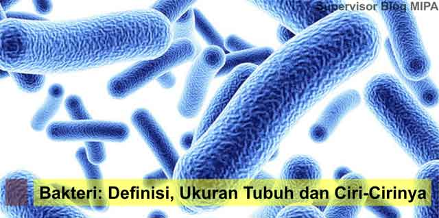 pengertian, ukuran tubuh, dan ciri-ciri bakteri beserta penjelasannya