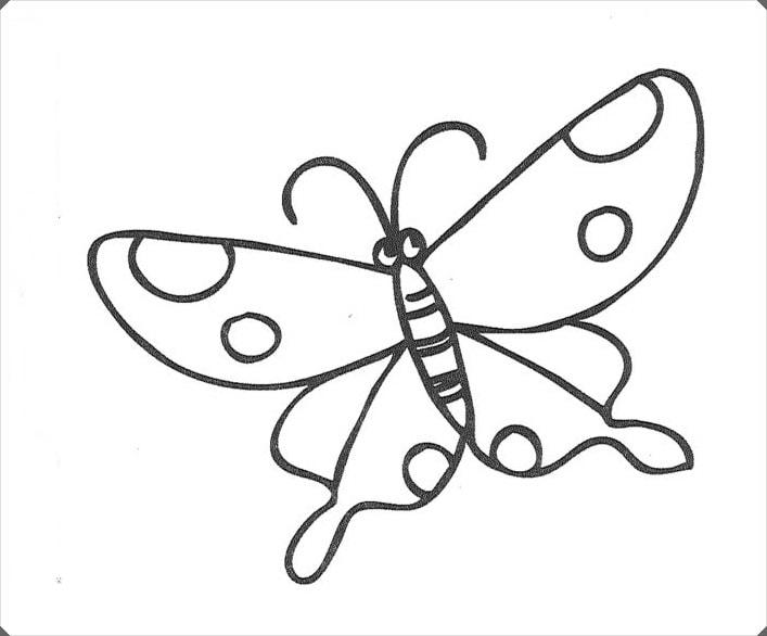 Cesitli Kelebek Boyama Resimleri Elisi Ve Hobi Calismalari