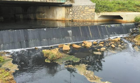 水污染 黑臭水