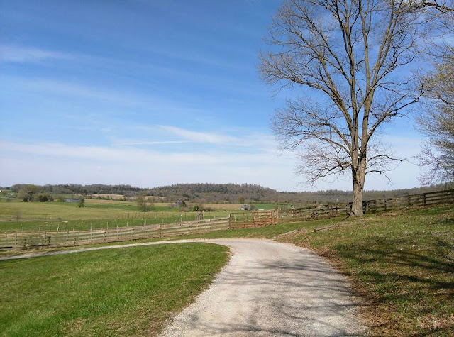 Beautiful Kentucky Down Under Views