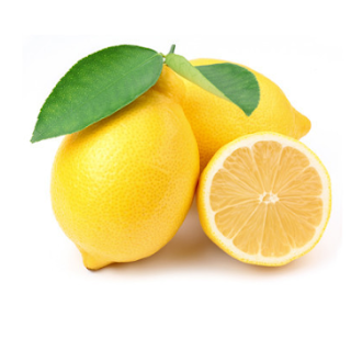 The lemon fruit is one of the most important fruit in the citrus family. It is a very healthy fruit and rich in many food ingredients like vitamins and minerals, mostly citric acid. Lemons are used as medicine because of the high content of citric and ascorbic acid. They are also valued for the water which is mostly used as an accessory food. Lemon water improves the flavor and taste of various dishes. It is widely used in the preparation of salads, lemonades, squashes, jams, jellies and marmalade. The lemon water can last for a long time but you have to observe some certain precautions.