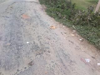 champa-ramnagar-road-purnia