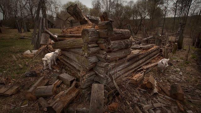 Fallen Houses