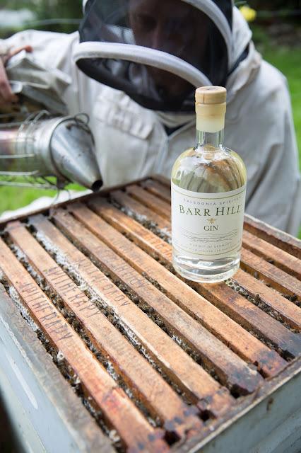 barr-hill,gin,classique,meilleur,caledonia-spirits,madame-gin,blog,miel,gin-au-miel