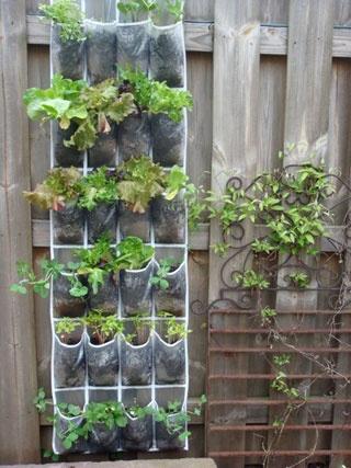 Im 225 Genes De Jardines Colgantes Jard 237 N Y Terrazas
