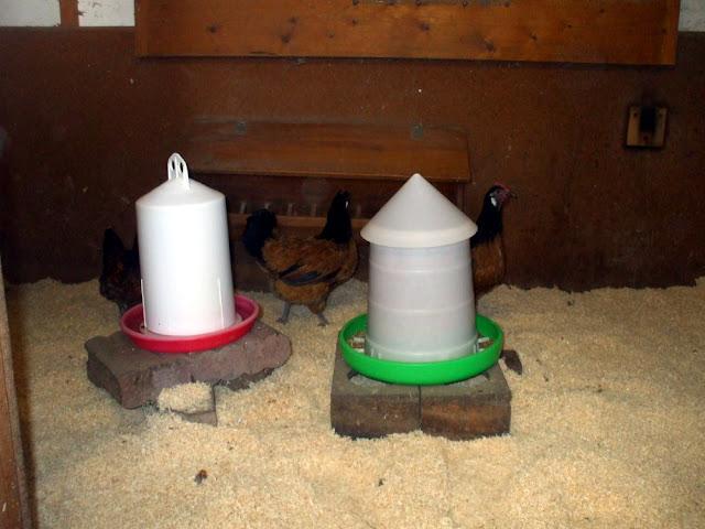 Einrichtung im Hühnerstall