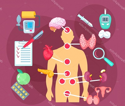 Endokrinoloji Nedir - Endokrinoloji Hangi Hastalıklara Bakar