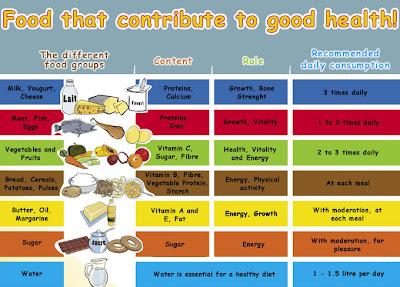daily food chart - Monza berglauf-verband com