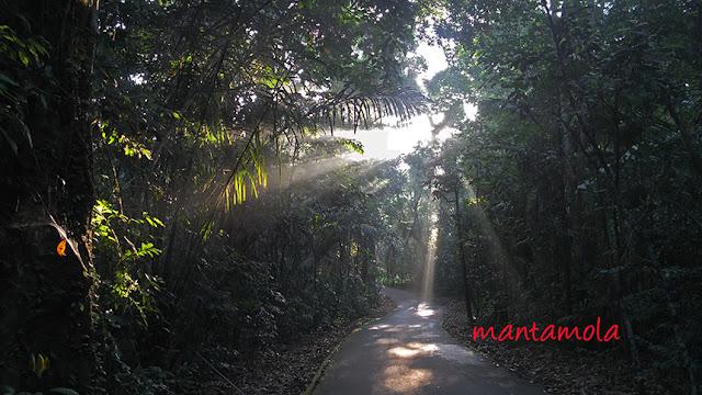sun shine, Pulau Ubin