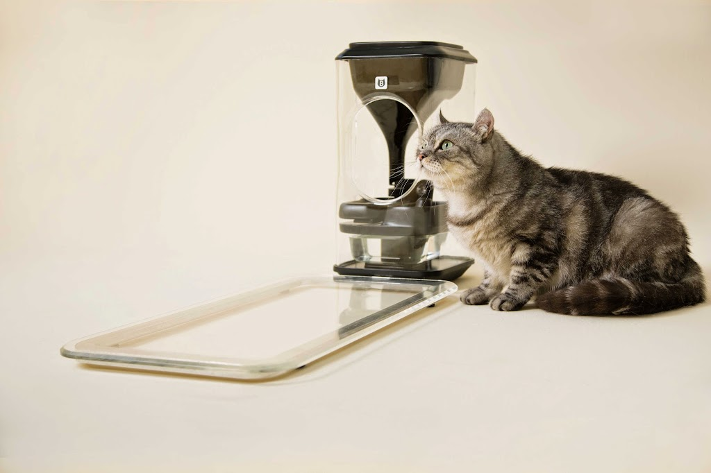 貓奴福音!42 ARK推貓咪臉部辨識餵食器,物聯網也搶進寵物市場