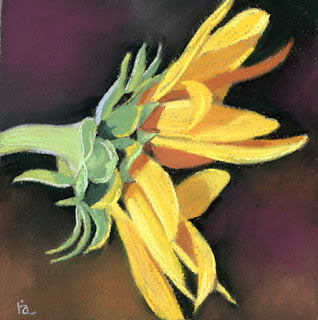 sunflower pastel painting for sale