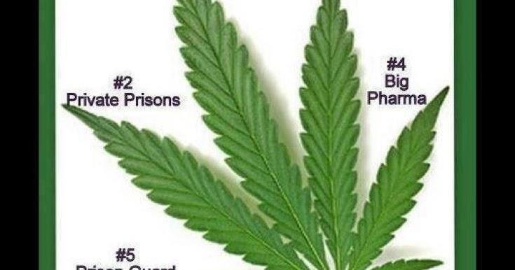 Top five groups lobbying against medical marijuana | Anonymous ART of Revolution