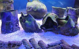 Χάπια από λαχανικά, 2.000 ετών