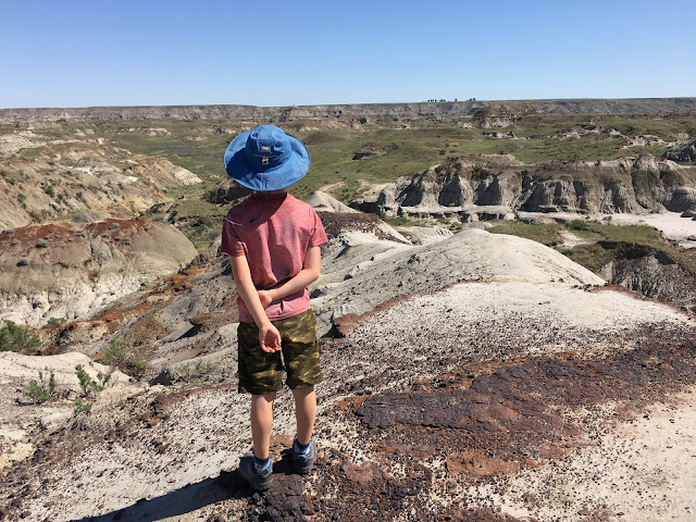 Fossil Hunting in Dinosaur Provincial Park (Family Adventures in the Canadian Rockies)