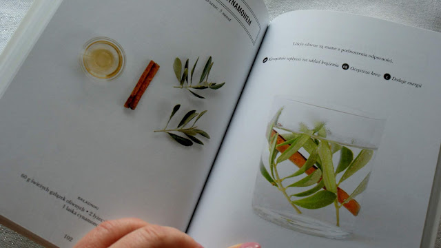 napar odtruwający,napar oczyszczający,fern green,tylko napary,foksal,buchmann,zioła na oczyszczenie,herbata oczyszczająca,z kuchni do kuchni,odtruwanie organizmu,najlepszy blog kulinarny,