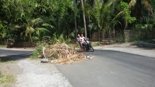 Ruas Jalan Provinsi Tanjung-Pohgading Rusak Berlubang