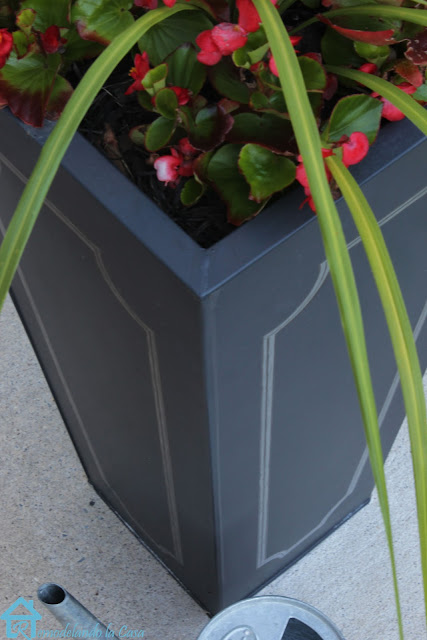 planters bought at Amazon.com are giving some stylish lines.
