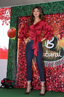 Bollywood Actress Shilpa Shetty Stills in Tight Jeans at Launch Of   0003.jpg