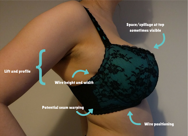 A side-on image of someone wearing a bra, labelled with the fit aspects visible at this angle.