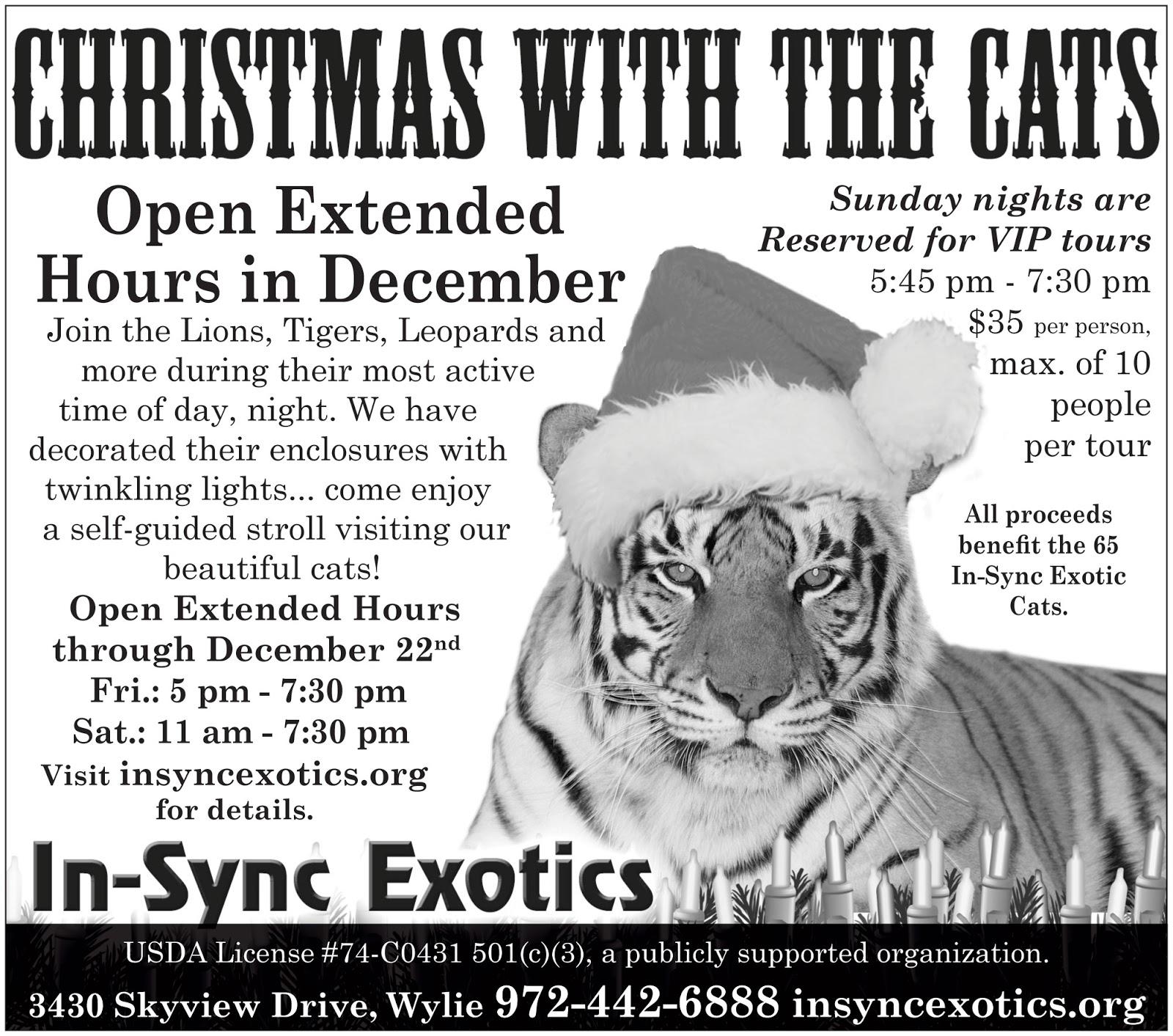 In-Sync Exotics\' Cat Tales: 2012