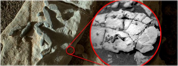 vestígios fósseis em Marte