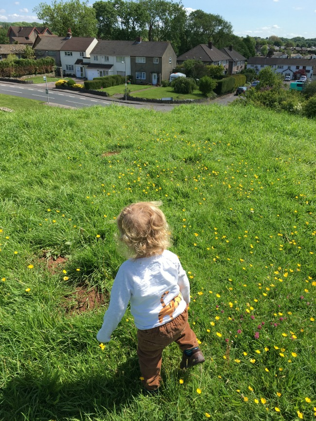 toddler on top of mound with grass and buttercups