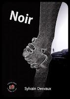 http://www.evidence-boutique.com/accueil/66-noir-epub-9791034800292.html