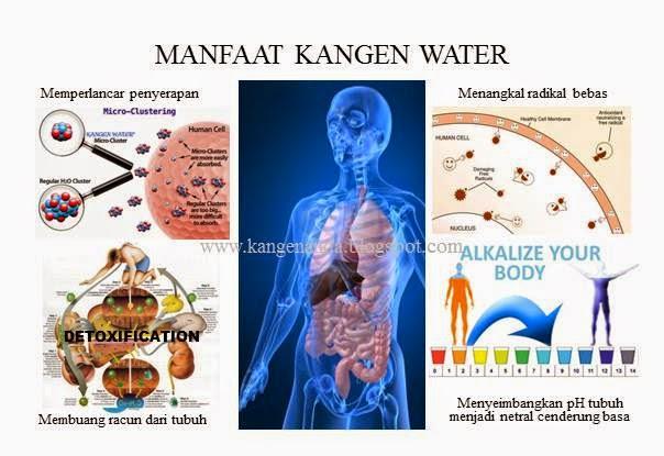 Bagaimana Cara Minum Kangen Water