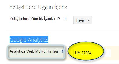 Analytics Web Mülkü Kimliği
