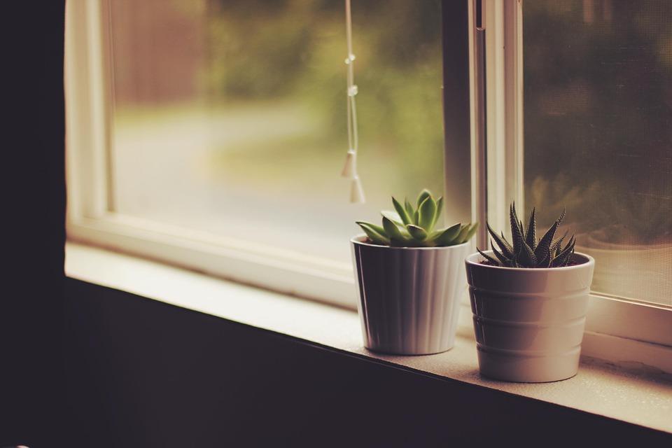 mercredi astuce v g talisez votre int rieur partir de vos d chets smiile le blog. Black Bedroom Furniture Sets. Home Design Ideas