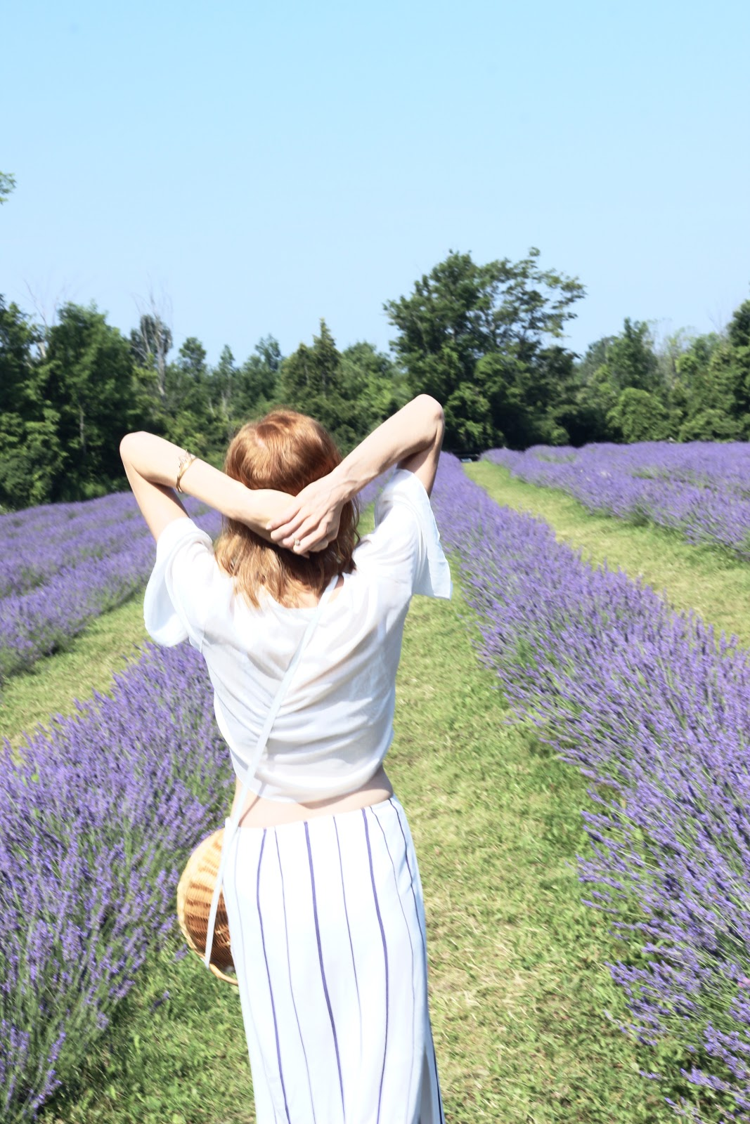Terre Bleu Lavender Farm, How to stop selling yourself short, summer style