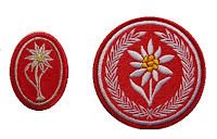 Edelweiss cloth insignia on field uniforms of Polish Podhale Rifles