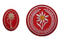 Edelweiss cloth insignia on field uniforms of Polish Podhale Rifles